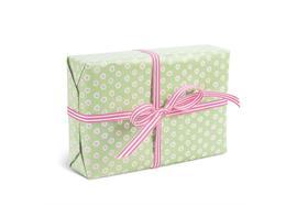 Geschenkpapier Tupfer Grün/Rosa