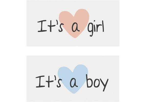 Magnet It's a girl/boy