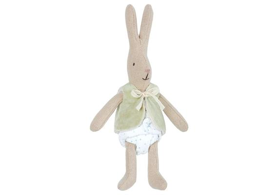 Mikro, Kaninchen mit Weste
